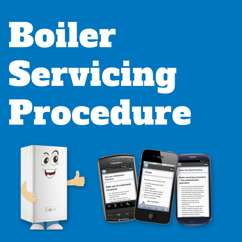 BFF Boiler Servicing Procedure